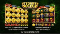 Play Tiger's Gold: Hold and Win Casino Slot - -Info