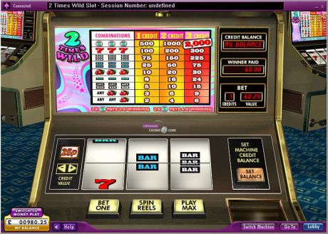 Play 2 Times Wild - Slot Game -Slot Reels