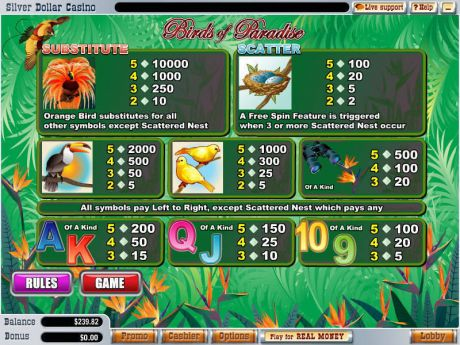 Play Birds of Paradise - Slot Game -Info