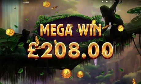 Play Lord of the Wilds - Slot Game -Winning