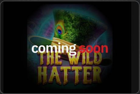 Play The Wild Hatter - Slot Game -Info