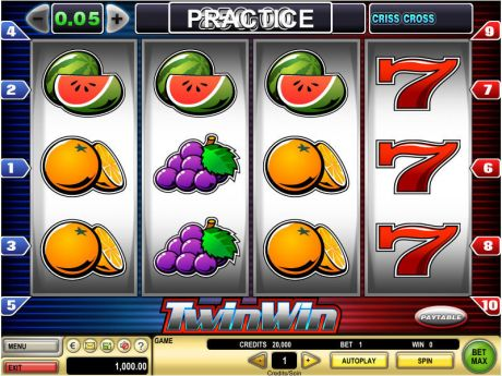 Play Twin Win - Slot Game -Slot Reels